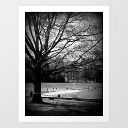 Freedom Park #3 Art Print
