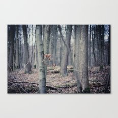 But he was gone Canvas Print
