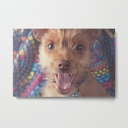 Puppy Laugh Metal Print