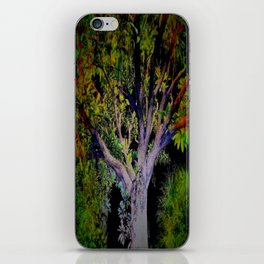 The Scenic Routes iPhone Skin