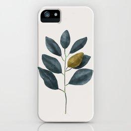 Branch iPhone Case