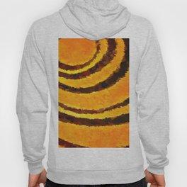 Pop Art Tiger Stripe Animal Print Hoody