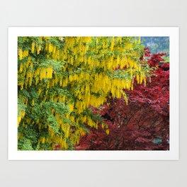 Warm comforting autumn trees Art Print