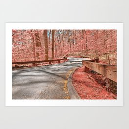 Opalescent Forest Road Art Print