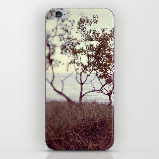 The Coast #2 iPhone Skin