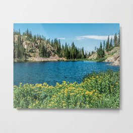 Yellow Flower Lake // Beautiful Daylight Evergreen Mountain Landscape Photograph Metal Print