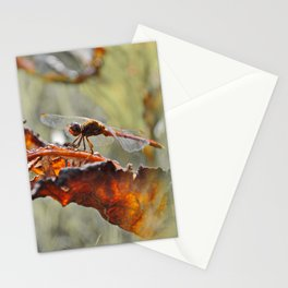Mimicry Stationery Cards
