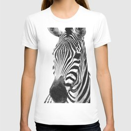 Black and white zebra illustration T-shirt