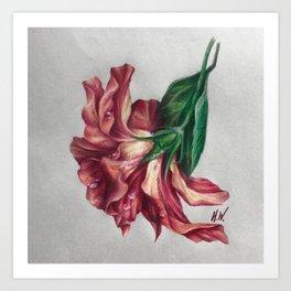 """""""Hibiscus"""" Drawing Art Print"""