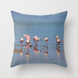 I Haven't the Time Or Crayons To Explain It To You Throw Pillow
