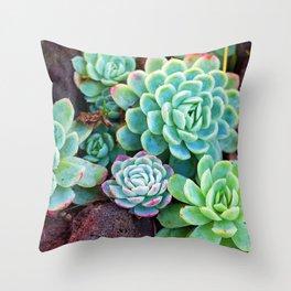 Green Succulents Throw Pillow