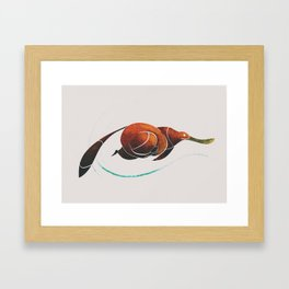 platypus Framed Art Print