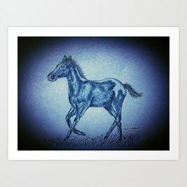 Blue Foal Art Print