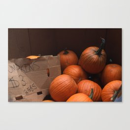 Pumpkins In a Box! Canvas Print