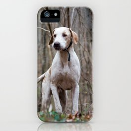 Hunting dog in forest iPhone Case