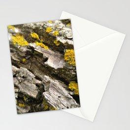 Oak Log Lichens Stationery Cards