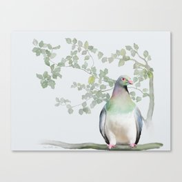 Wood Pigeon Canvas Print
