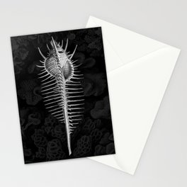 Murex1 (Black & White, Square) Stationery Cards