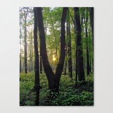 SlingShot Canvas Print