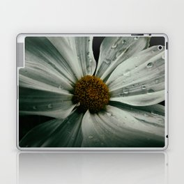 Hush Laptop & iPad Skin