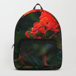 Desert Fall Colors III Backpack