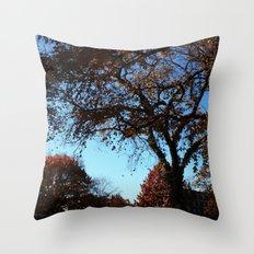 fallday Throw Pillow