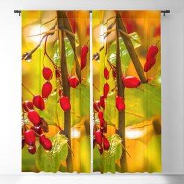 Autumn drops Blackout Curtain