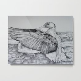 Taking Flight Metal Print