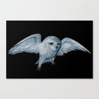 hedwig Canvas Prints featuring Hedwig by Ashley Lick