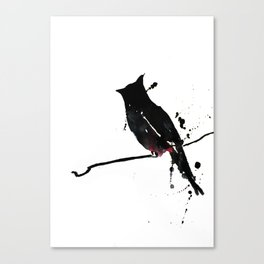 Red-vented Bulbul Canvas Print