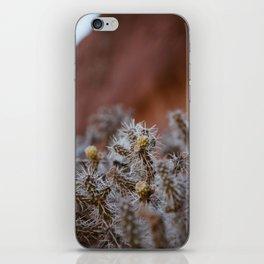 desert flora iPhone Skin