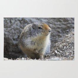 Ground Squirrel Rug