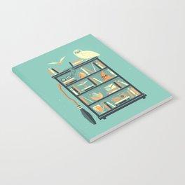 Potter Shelf | Rowling Notebook