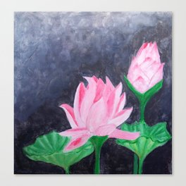 Two Pink Lotus Canvas Print