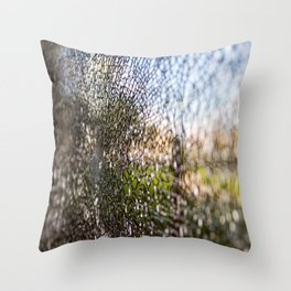 crack Throw Pillow