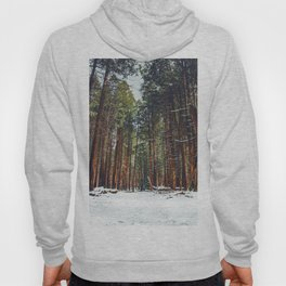 The Winter Forest (Color) Hoody