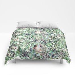 SEATTLE'S GREEN BEARD Comforters