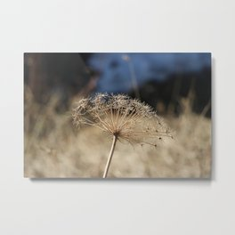 Nature in the French Alps Metal Print