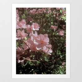 Happy Little Pink Flowers Art Print