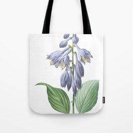 Hemerocallis Caerulea art of Nature, flower print, botanical illustration Tote Bag