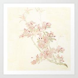 Watercolour of pink blossom Art Print