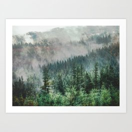 Foggy Forest Wanderlust Adventure - PNW Photography Art Print