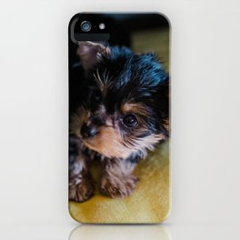 Dog by hannah grace iPhone Case