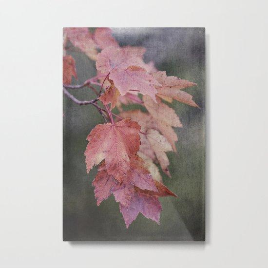 fall cascade Metal Print