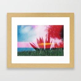 Lomography Park Framed Art Print