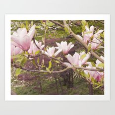 Pink Melodies Art Print
