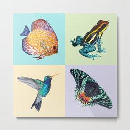 Colibri Frog Fishie Moth Animal Illustration Metal Print