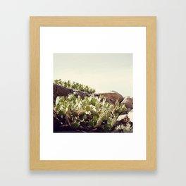 Febrero Framed Art Print