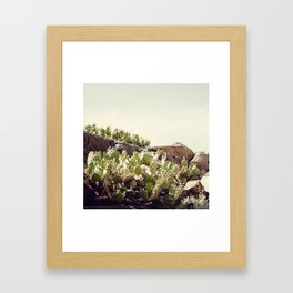 Febrero Framed Art Print