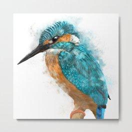 Kingfisher  Metal Print